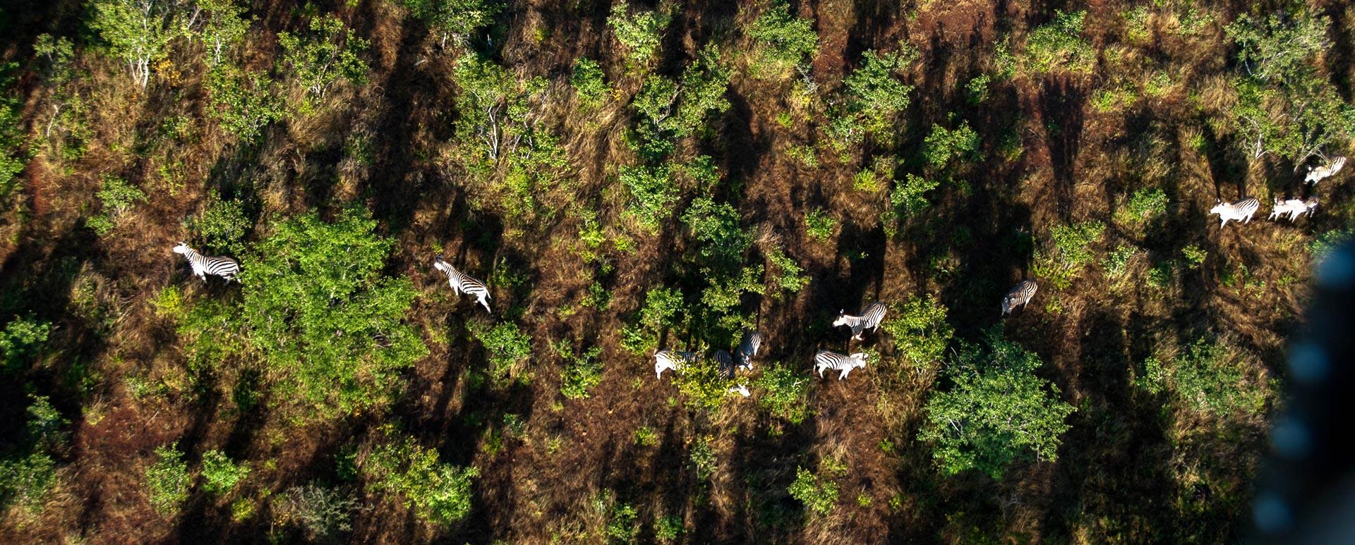 Helicopter Flight Zambezi National Park